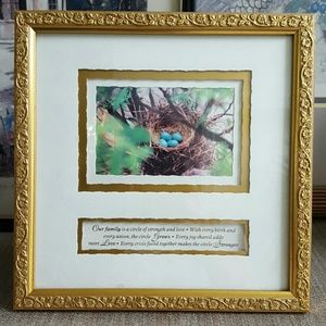 Framed Birds Nest/Saying